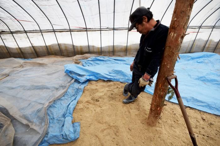 一部もみ殻を敷き詰めている場所があった。もみ殻は肥料として優秀なだけでなく、雑草を予防する意味もあるとのこと。