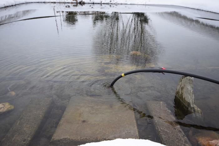 自分で堀った地下水をくみ上げた池が3つ。水量が多い所では毎秒1ℓ。他は毎分10ℓ。
